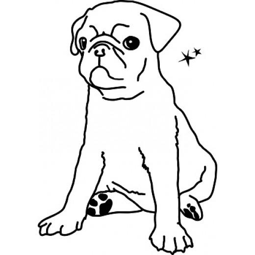 MIMI´lou Mon petit chien-31