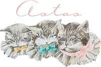 CarlsenBogDenSultneLarveAldrigmt-20