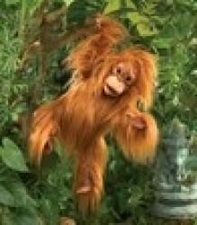 Folkmanis Hånddukke Baby Orangotang-20