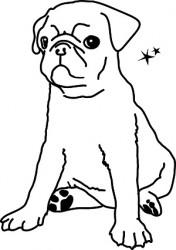 MIMI´lou Mon petit chien-20
