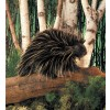 Folkmanis Porcupine-02
